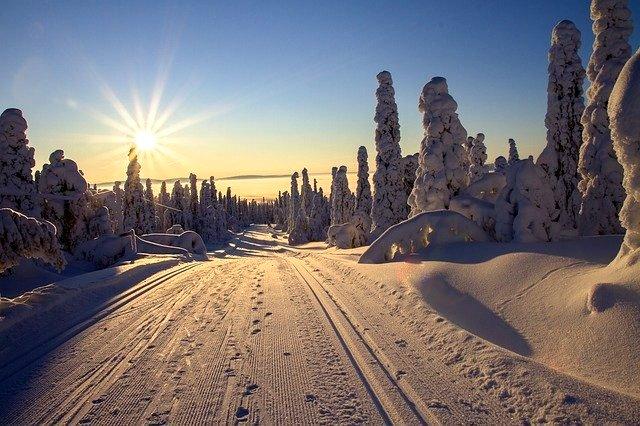 Cross-country ski-tracks in Finland