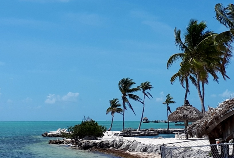 Key west beach with palms and deck chairs on a windy, sunny day