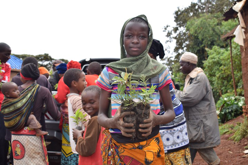 Young African woman holding tree seedlings in her hands, people in the back