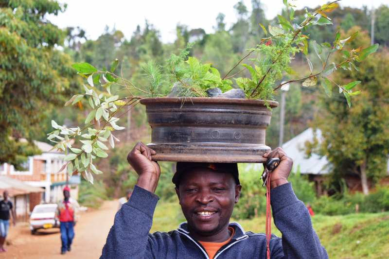 portrait African man, carries rim with plants on his head